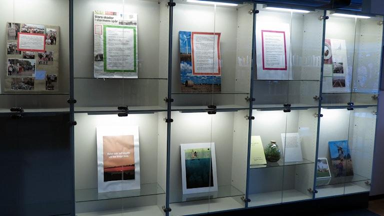 Utställning på Almedalsbiblioteket. Foto: Jonas Neuman/Sveriges Radio