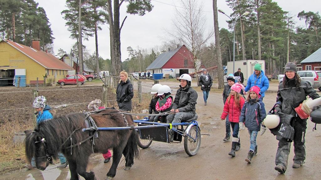 Travskola med Annika Klang i sulkyn och sportlovslediga barn. Foto: Tomas Ardin/Sveriges Radio