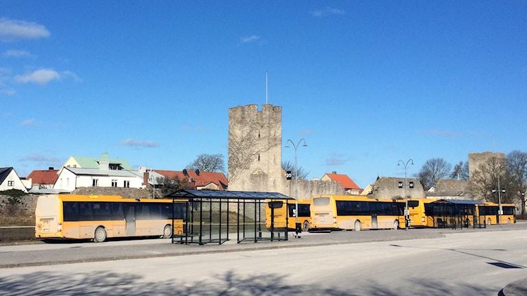 Bussar. Foto: Jonas Neuman/Sveriges Radio