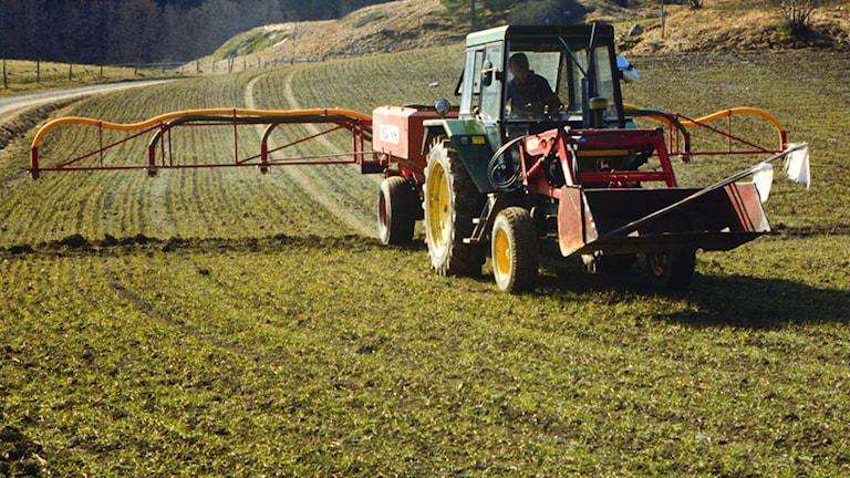 Vårbruk. Foto: SVT Bild