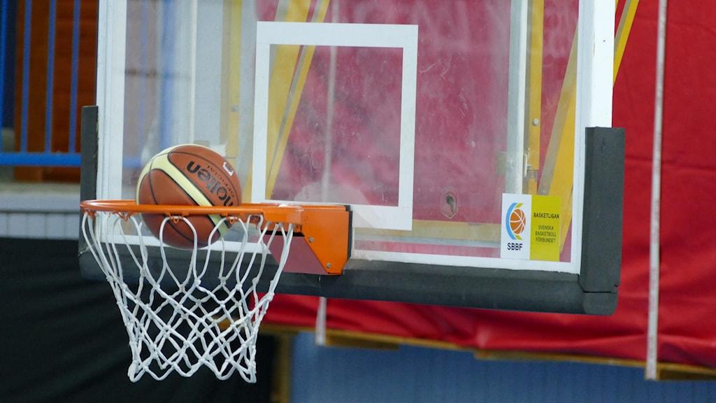 Basketboll i korg. Foto: Lasse Eskelind/Sveriges Radio