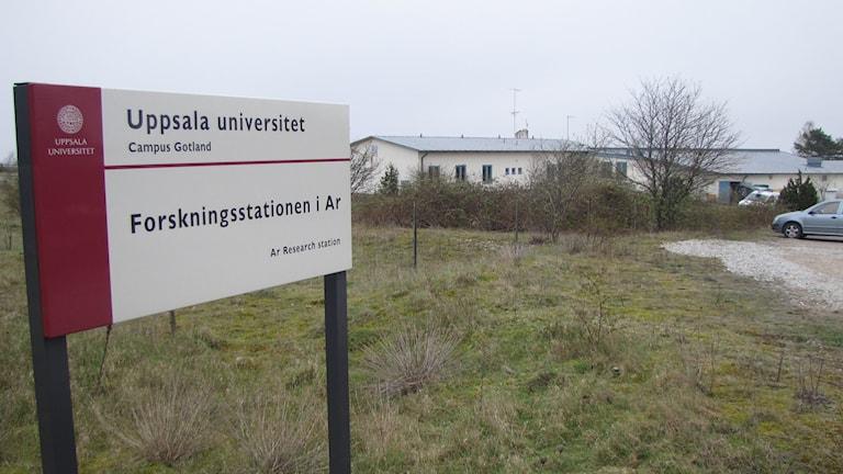 Forskningsstationen i Ar