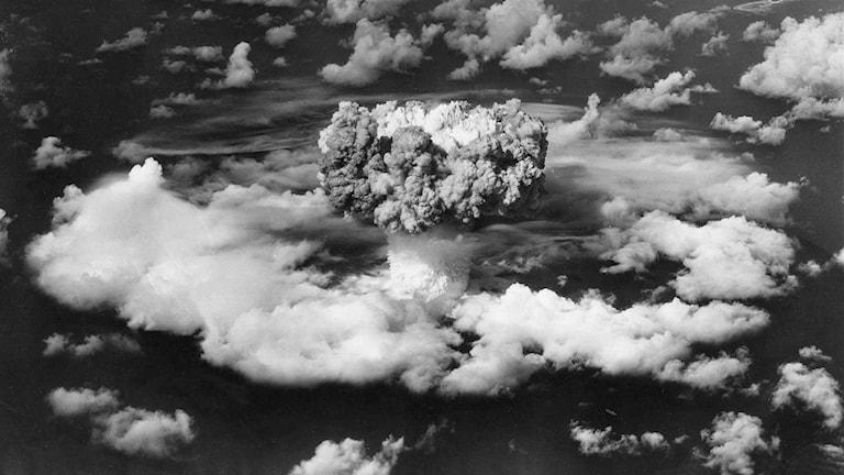 Atombomb. Foto: SVT Bild
