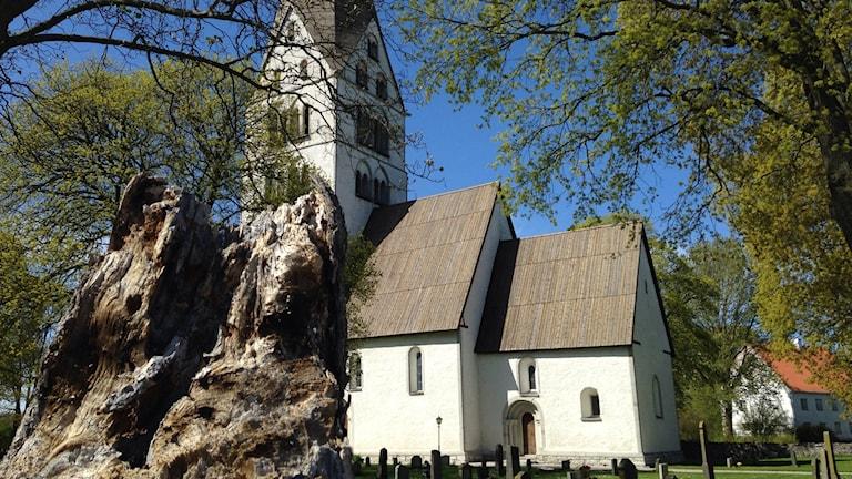 Stenkyrka kyrka drabbad av mögel. Foto: Katarina Hedström/Sveriges Radio