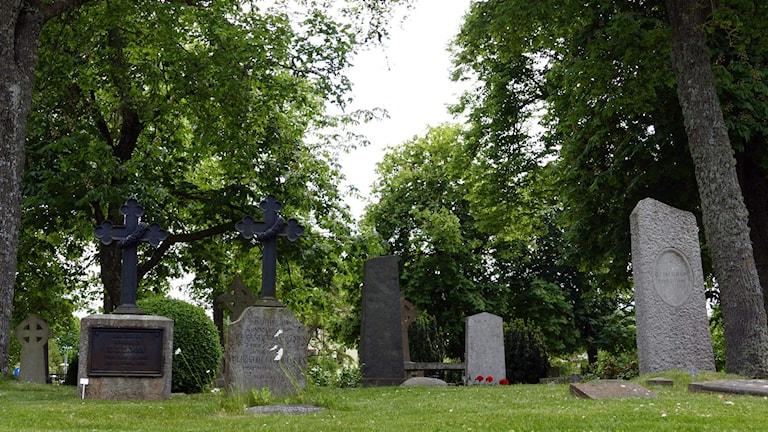 Kyrkogård. Foto: Jonas Neuman/Sveriges Radio