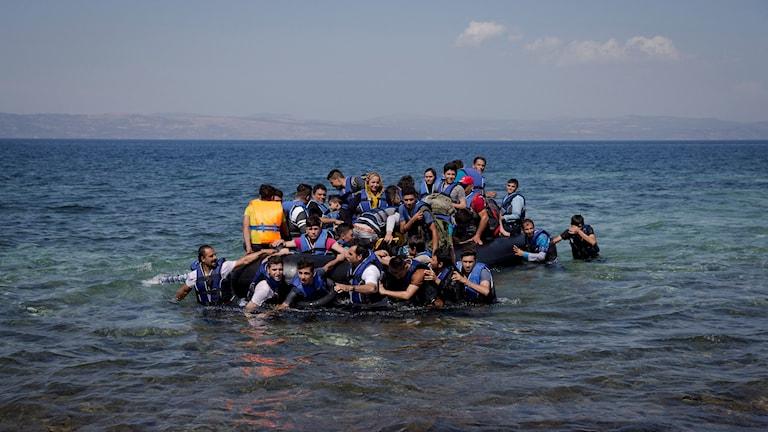 Flyktingar kommer i land till Lesbos. Foto: Petros Giannakouris