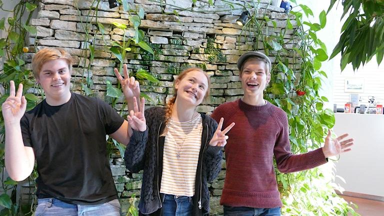 Samuel Kåring, Lisa Wilson och Ludvig Rödland. Foto: Eva Didriksson/Sveriges Radio