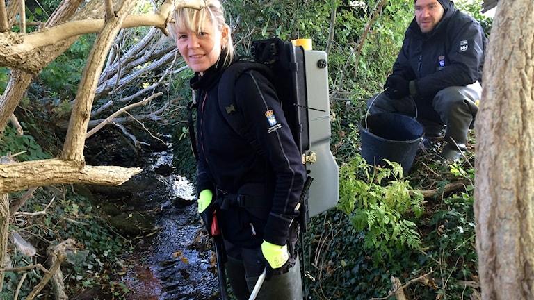 Pia Lindberg fiskar med elström. Foto: Joakim Åstrand/Sveriges Radio
