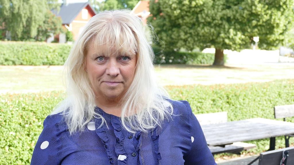 Meit Fohlin, Socialdemokraterna