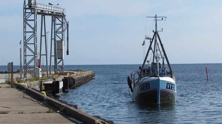 En fiskebåt på väg in i Ronehamn. Foto: Johan Hellström/Sveriges Radio