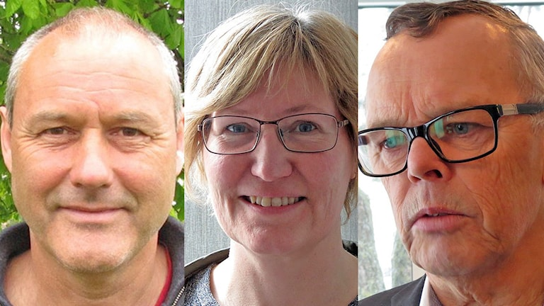 Rolf Öström, Sofia Wollman och Åke Svensson. Foto: Sveriges Radio