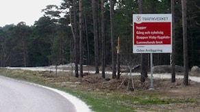 Cykelvägen mellan Visby och Lummelunda.