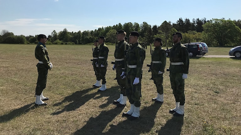 Gotlands regemente