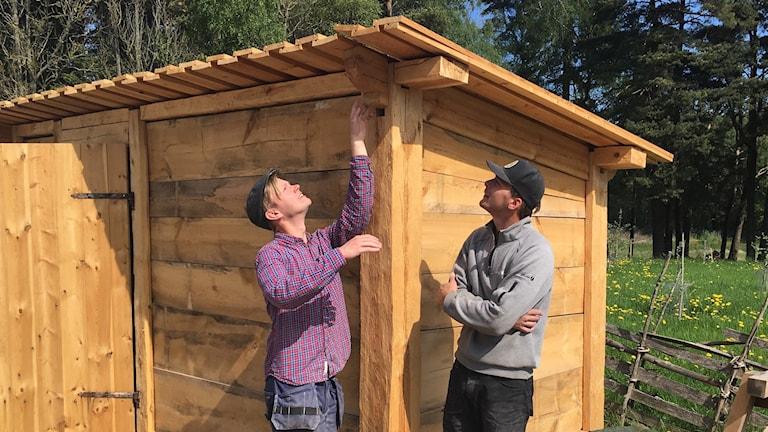 Studenterna i byggnadsvård Johan Häggblom och Ola Nyström bygger bulhus