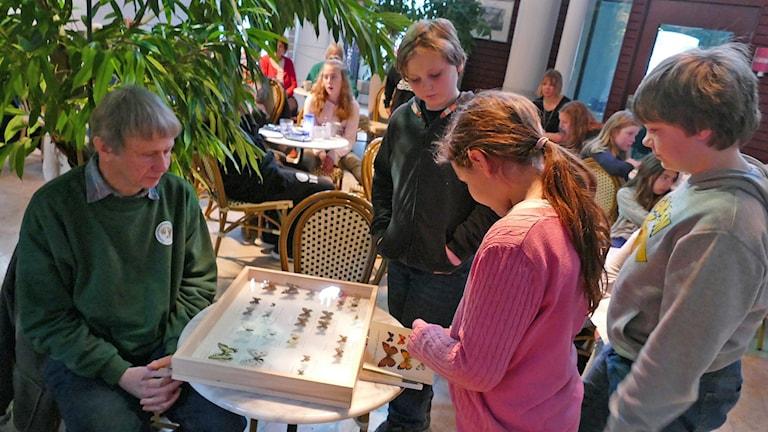Anders Lekander visar fjärilar
