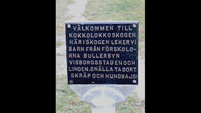 Kokkolokkoskogen. Foto: SR Gotland