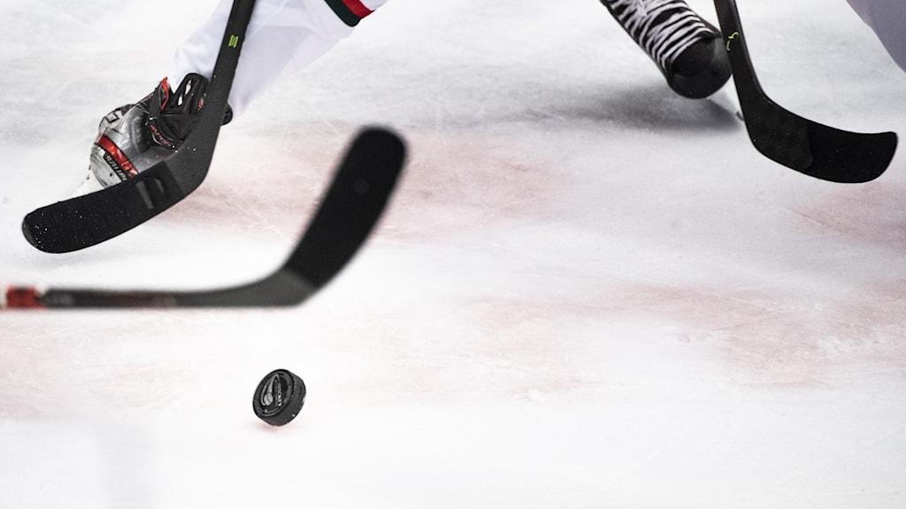 Närbild på puck, klubbor och skridskor under ishockeymatch.