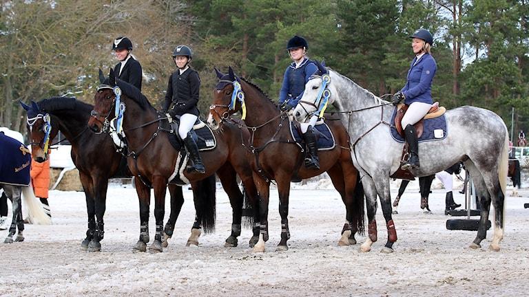 Traume Ridsällskaps lag som vann div II i hoppning på Gotland 2016.