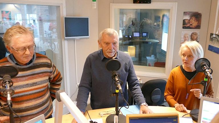 Klimatpanel, Bengt Grandelius,  Wolfgang Brunner, Kerstin Nyberg.