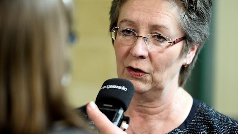 Eva Wendel Rosberg, regeringens särskilda utredare om surrogatmödraskap.