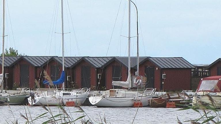 Flundreviken med fritidsbåtar. Foto: Jonas Neuman/P4 Gotland Sveriges Radio
