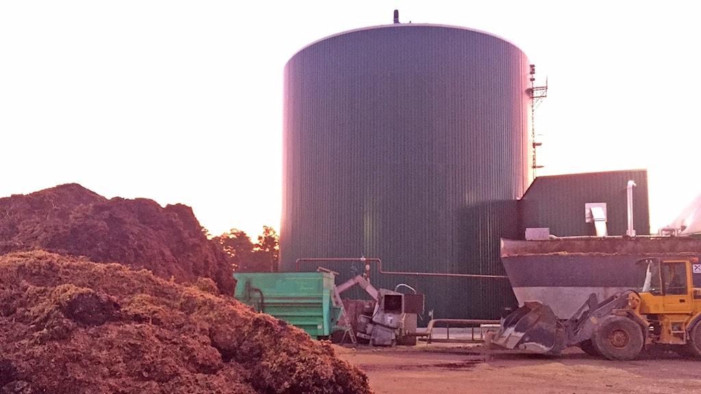 huvudreaktorn/rötkammaren med gödsel som ska bli biogas