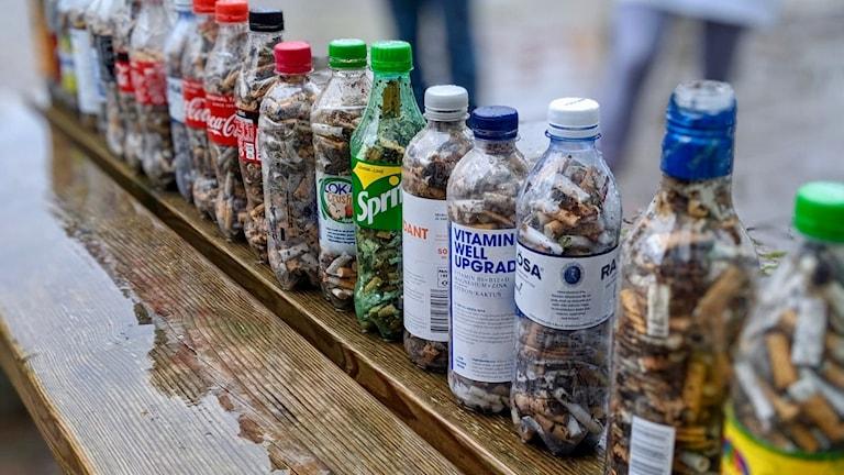 Elever från hållbarhetsutbildningar har bildat föreningen GHOST och samlat fimpar i petflaskor.