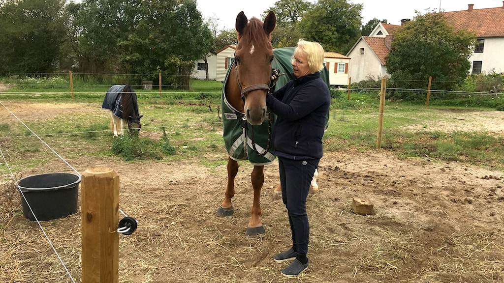 Louise Etzner Jakobsson och hästen Zernard
