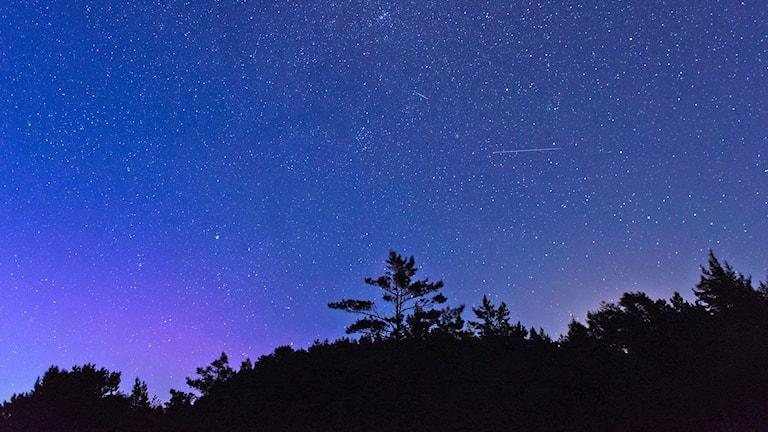 Stjärnklar natt på Gotska Sandön