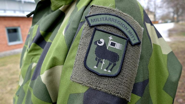 Försvarsmakten på Gotland. Militär. Kammoflage. Uniform.
