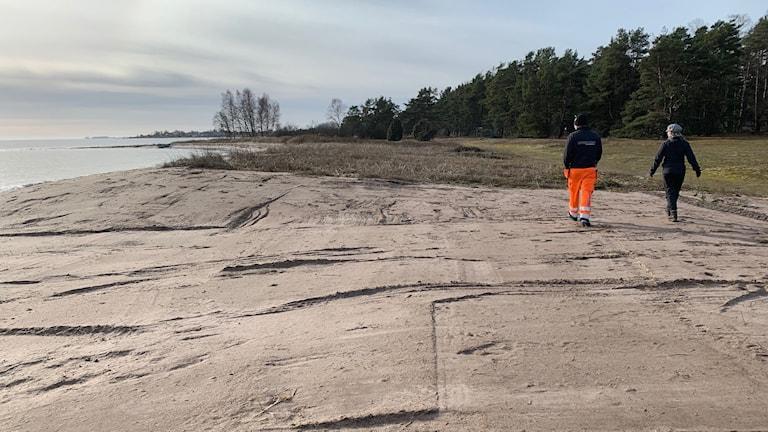 En strand vid Gotlands ostkust