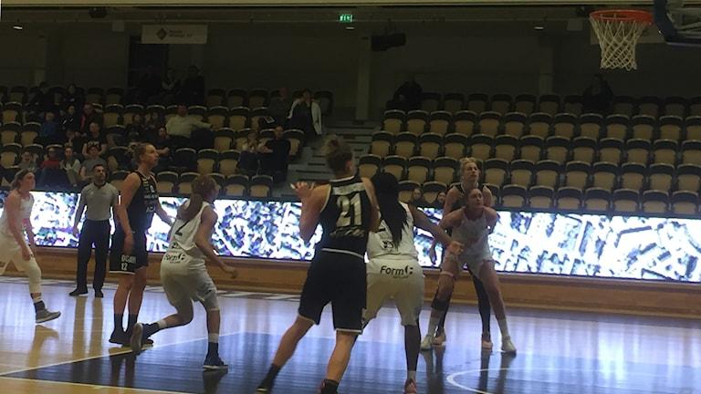 Visby Ladies mot Udominate i Umeå