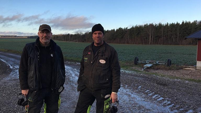 Lantbrukarna John Glifberg och Torbjörn Kotz vill ha kvar Glyfosatet
