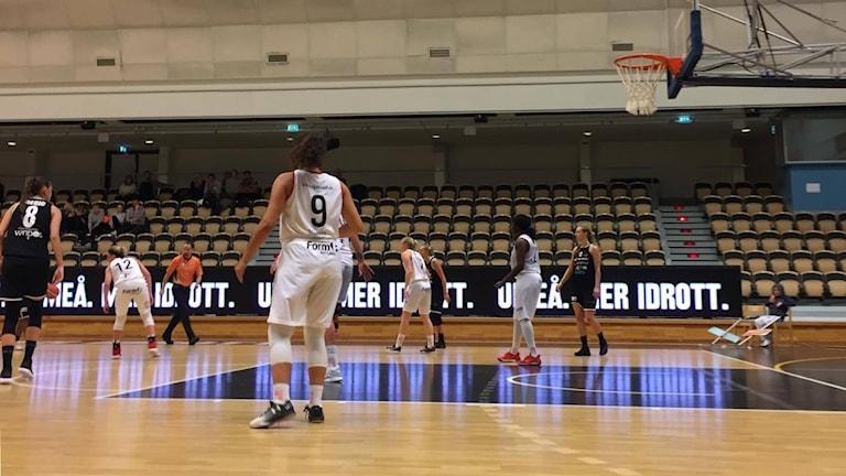 Umeå-Visby Ladies