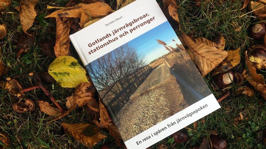 """Erik Dauns bok """"Gotlands järnvägsbroar, stationshus och perronger"""""""