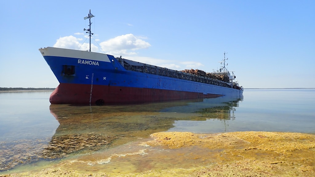 Ett stort lastfartyg som nästan kört upp på land.