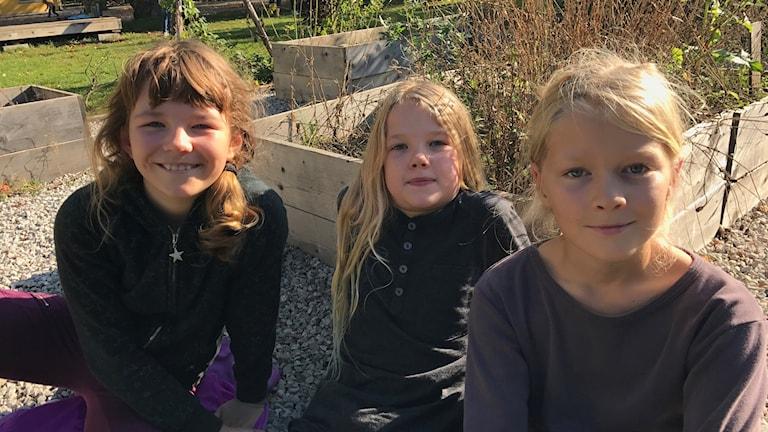 Hedvig, Elias och Amon i klass fem på Orionskolan reflekterar över barnkonventionen