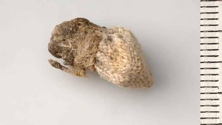 Påse med 3500 år gamla ben som fanns i huvudet på Viklau-Madonnan