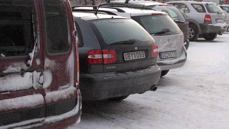 Begagnade bilar hos bilhandlare. Foto: Clara Hägg/SR Gotland.