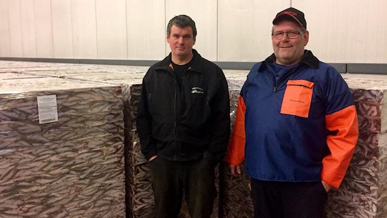 Roland Pettersson, fiskare och Patrik Johansson som jobbar på fiskfabriken i Ronehamn. (Framför fryst fisk) Foto Stina K