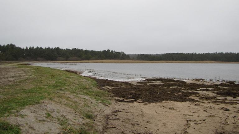 Inre Valleviken.