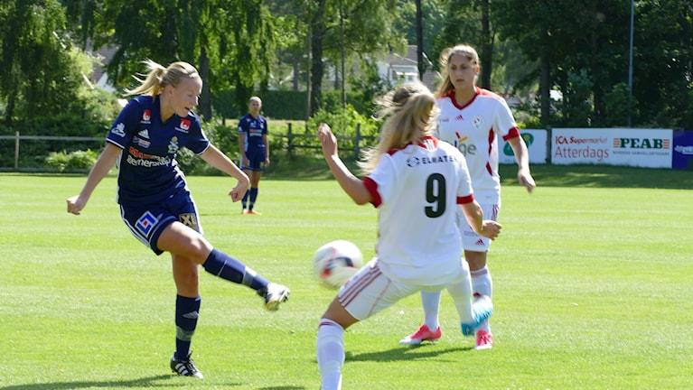 Maja Elofsson P18