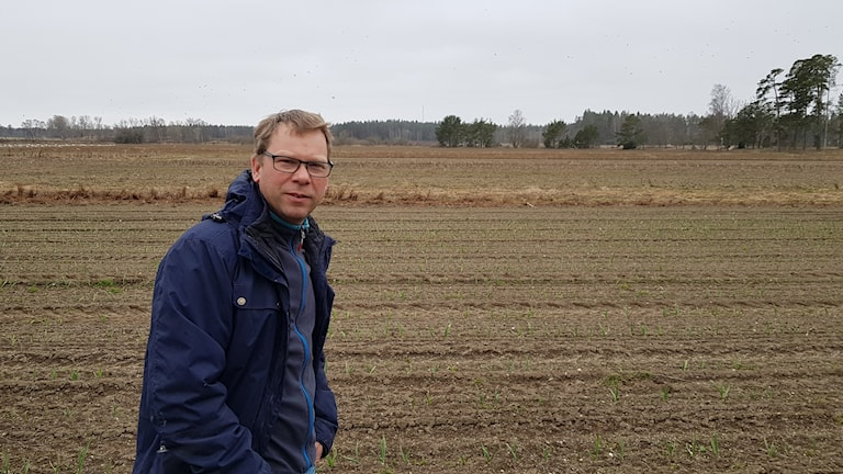 Andreas Wiklund