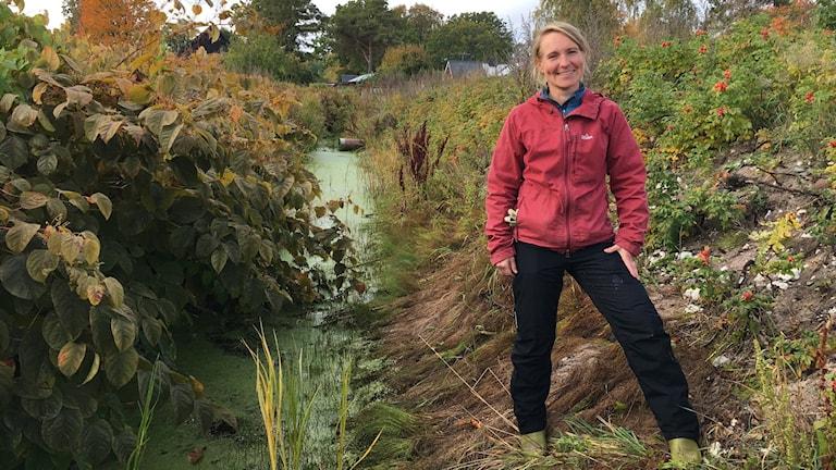 Annika Forslund, ekolog på länsstyrelsen på Gotland