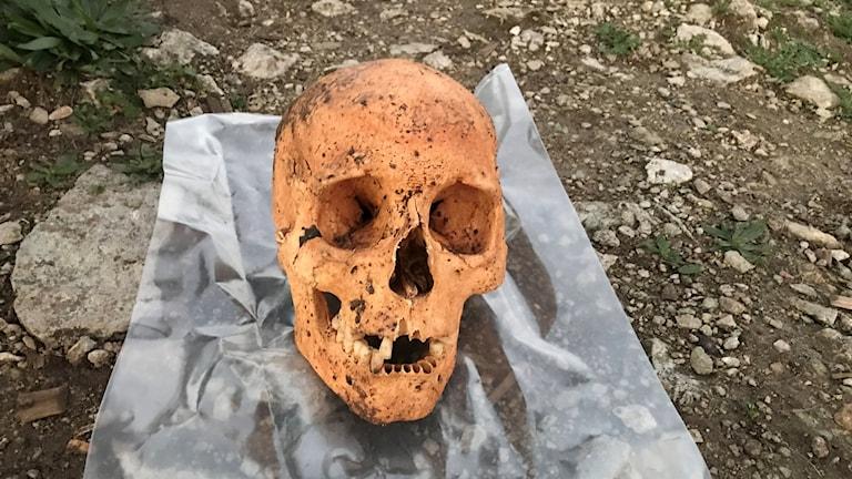 Skelettet hittades när en villa i visbby skulle dräneras.