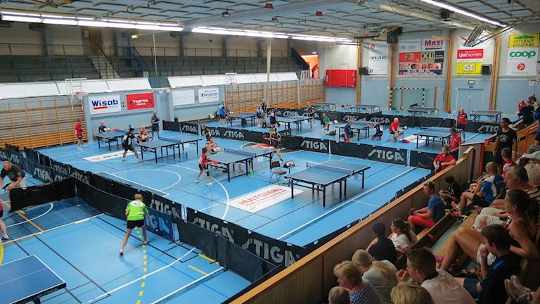Många vinnarskallar i Södervärnshallen i Visby när Östersjömästeskapen avgörs. Foto: Håkan Erlandsson/SR Gotland