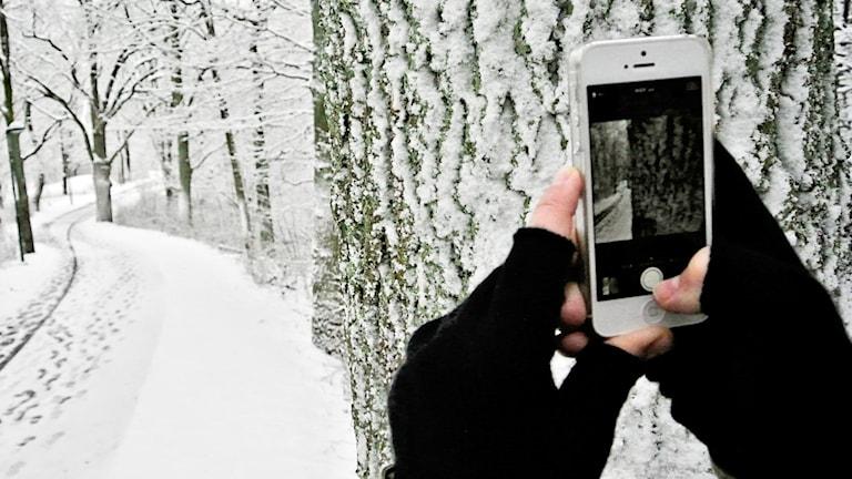 En kvinna tar en bild med mobil i vinterväder