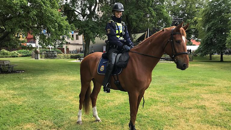Polishästen Vilgot tillsammans med polisryttaren Malin Edqvist Malin Edqvist