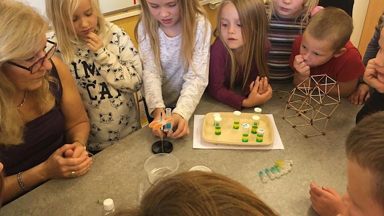 Eleverna på Öja skolan utför ett kemiexperiment.