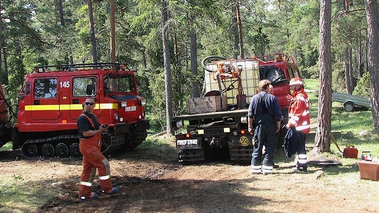 Arkiv/Skogsbranden bekämpas med bandvagnar.